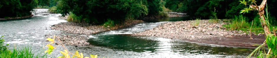 The Costa Rican river picture